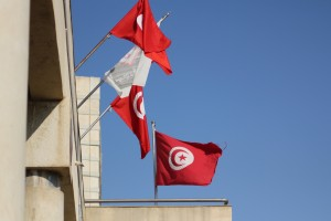 Tunisian flag by Tarek